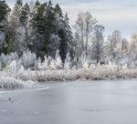 En vacker vinterdag